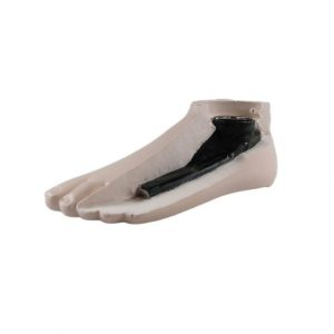 Paediatric SACH Foot by WillowWood